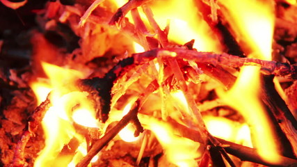Close up of a blazing bonfire in the night.