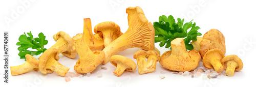 Fotobehang Groenten Pilze, Petersilie