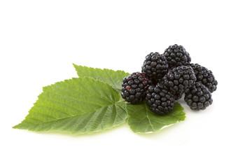 Ripe blackberries.