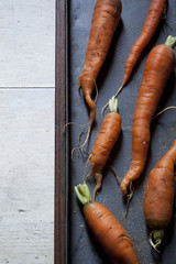 fresh young biological orange carrots