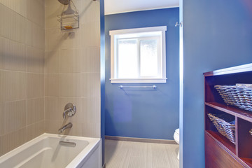 Light blue bathroom interior