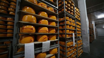 Storage of cheese