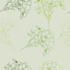 background of flowers 5