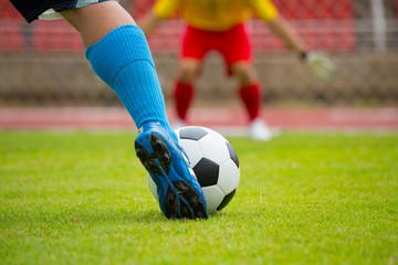 Football or soccer Goal defence