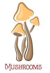 Cartoon forest mushrooms