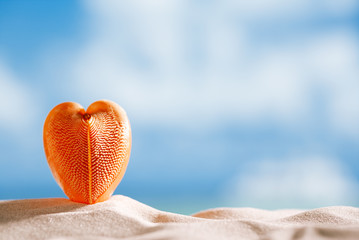 red heart sea shell with ocean , beach and seascape