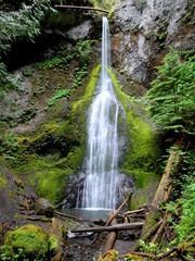 Tall and Thin Waterfall in Washington State