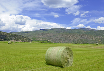 Rolls of Hay on farm in rural landscape