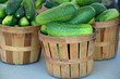 cucumbers in bushel baskets