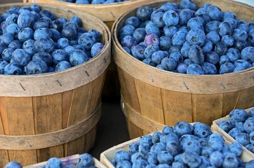 blueberries in bushel basket