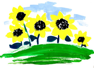 sunflowers in field, drawn