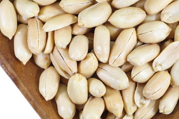 Close - up healthy food processed peanuts