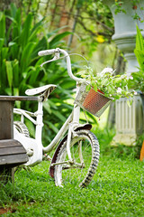 close up bicycle and flower in garden