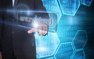 Businessman pointing to word encrypted