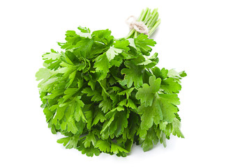 Parsley leaf on white