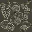 set of fruits, lemon,grapes,fig, papaya, coconut, currant, vecto