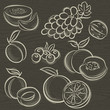 set of fruits, grapes, melon, apricot, peach, vector