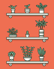 Set of houseplants in pots on shelves. Vector illustration.