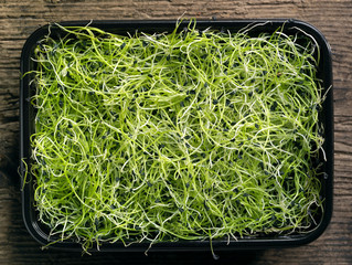 box of garlic sprouts