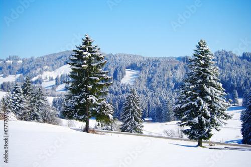 canvas print picture wunderschöne winterlandschaft mit wald