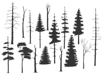 free handdrawing set of the tree
