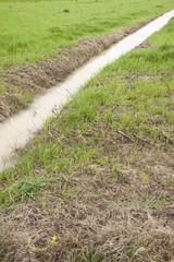 Ditch in a field