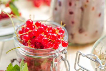 red white currants gooseberries jars preparations