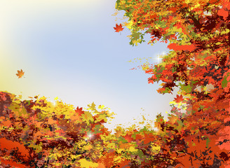秋 バックグラウンド Autumn orange leaves background