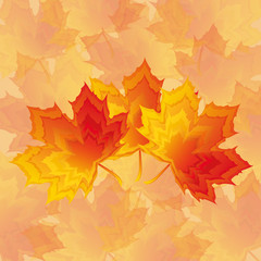 Beautiful autumn wallpaper with red - yellow maple leaves