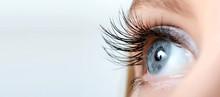 """Постер, картина, фотообои """"Female eye with long eyelashes close-up"""""""