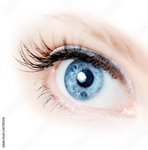 Female eye with long eyelashes close-up - 67785256