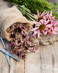 bunch of healing coneflowers, estragon and sack with dried echin
