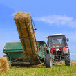 canvas print picture - Hay harvesting