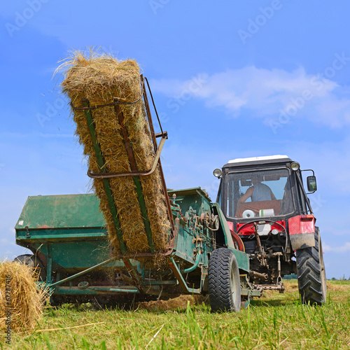 canvas print picture Hay harvesting