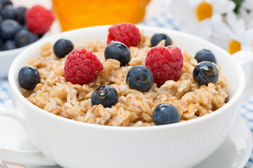 oat porridge with fresh berries, close-up