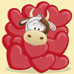 Cow in hearts