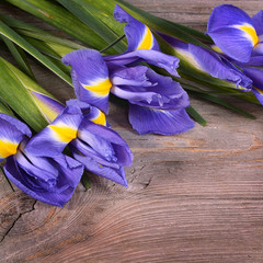 Blue irises on wooden boards