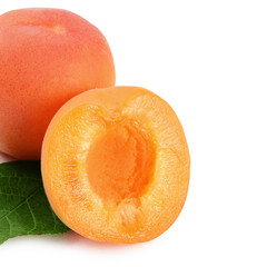 Fresh apricot with a leaf