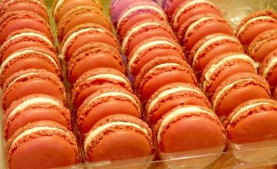 macaron colourful dessert