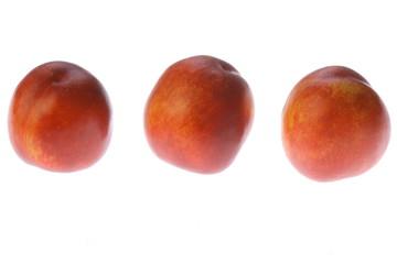 nektarynka