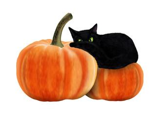 черный кот лежит на тыкве