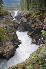 Athabasca Fall
