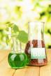 Conceptual photo of bio fuel.  On bright background
