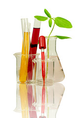 Set of laboratory equipment and chemical solutions.