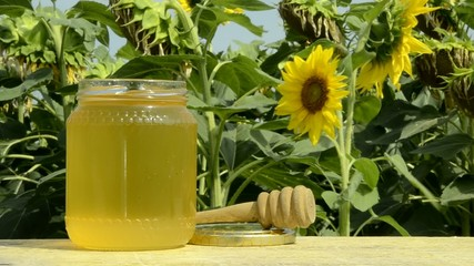 Sunflower honey Miele di girasole Sonnenblumenhonig