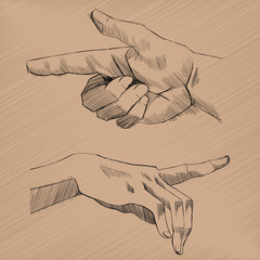 Vector Sketch Hands
