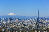 [東京都市風景]快晴青空・富士山と東京スカイツリー・東京都心の高層ビル群を一望
