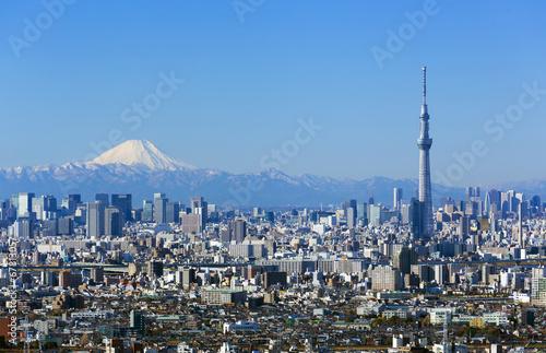 Fotobehang Tokyo [東京都市風景]快晴青空・富士山と東京スカイツリー・東京都心の高層ビル群を一望