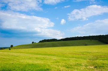 beauty green summer rural landscape view on blue sky backgrounds