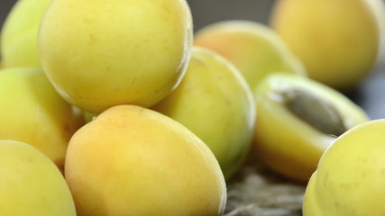 Apricots (not loopable)